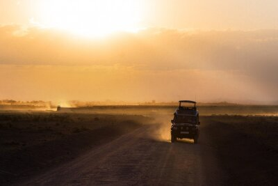 Poster Sunset in african savannah, silhouettes of safari car and animals, Africa, Kenya, Amboseli national park