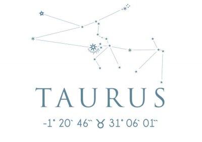 Poster TAURUS