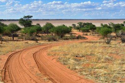 Poster The Kalahari desert, Namibia