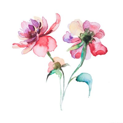 Poster the spring flowers watercolors isolated on the white background