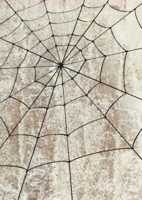 Poster Toile surd'araignée un mur. Street art