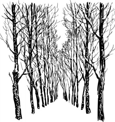 Poster Trees in the winter park