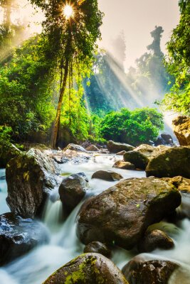 Poster Tropical waterfall