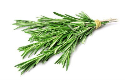 Poster Twig of rosemary