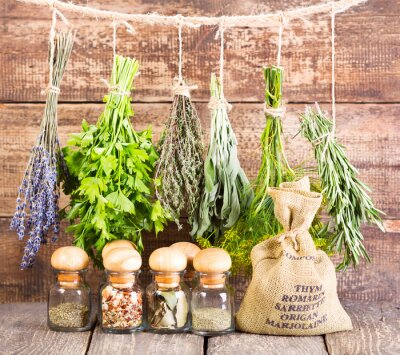 Poster various fresh and dried herbs