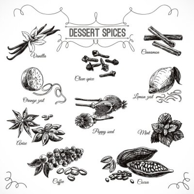 Poster Vector hand drawn set with Dessert Spices.