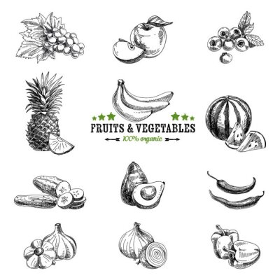 Poster Vector set of fruit and vegetables.