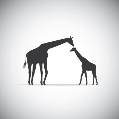 Poster Vector silhouette of mother giraffe with her baby
