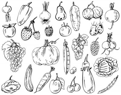 Poster vegetables, fruits and berries