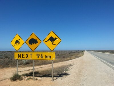 Poster Verkehrsschild Next 96 km im Outback, Australien