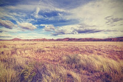 Poster Vintage retro stylized landscape, USA