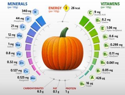 Poster Vitamins and minerals of pumpkin. Winter squash nutrients