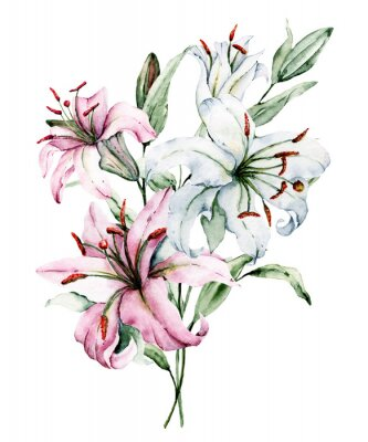 Poster Watercolor flowers lilies. Floral bouquet, clip art. Arrangement with lily perfectly for printing design on invitations, cards, wall art and other. Isolated on white. Hand painted.
