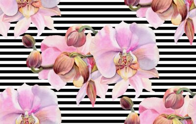 Poster Watercolor flowers. Pink orchids