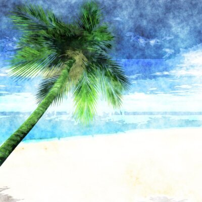 Poster Watercolor palm tree on beach