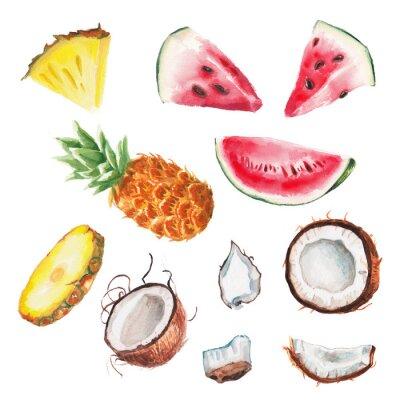 Poster watercolor summer fruits set