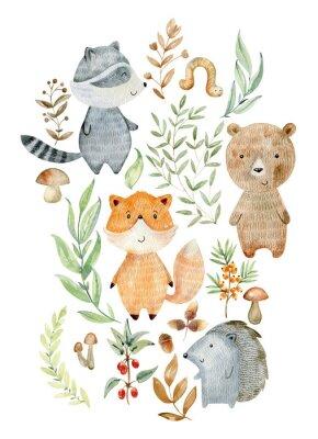Poster Watercolor woodland arrangements.