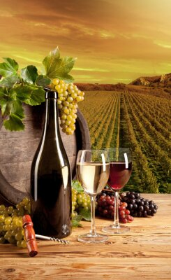 Poster Wine in vineyard