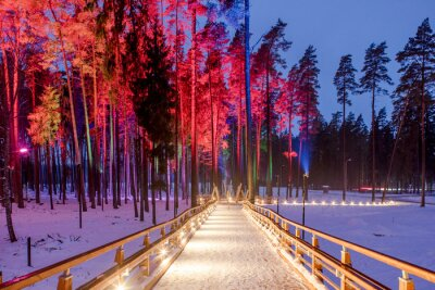 Poster Wooden bridge in the forest park. Night multicolored lights.