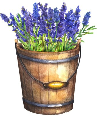 Poster Wooden bucket with lavender