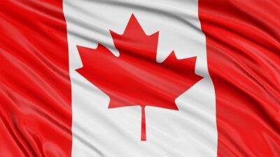 Sticker 3D Canada Flag