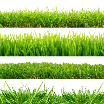 Sticker 4 Wiesen Gras Freisteller