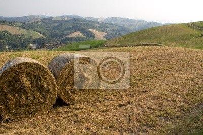 A landscape of the hills near Florence in Italy