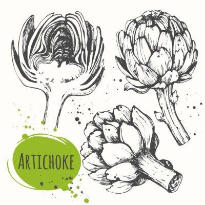 Sticker Aartichoke. Set of hand drawn artichoke. Fresh organic food.