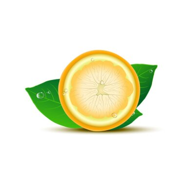 Sticker Abstract lemon with leaves and drops on white background