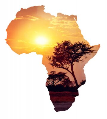 Sticker African sunset with acacia, Map of africa concept