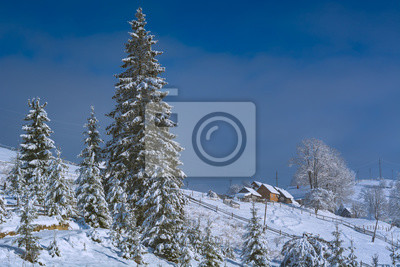 Alpine mountain village on a hill