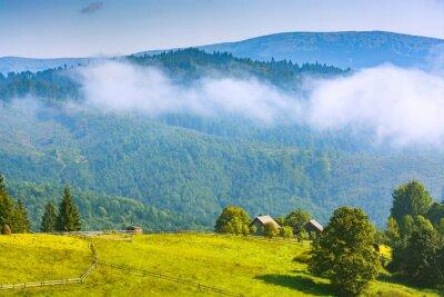 Alpine mountain village on a spring meadow
