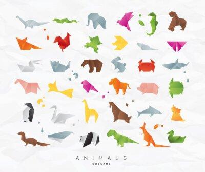 Sticker Animals origami set color