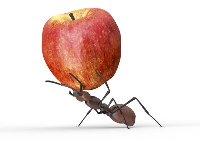 Sticker ant is lifting an apple isolated on a white