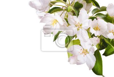 Apple blossom brunch_6