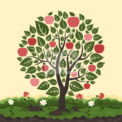 Apple tree