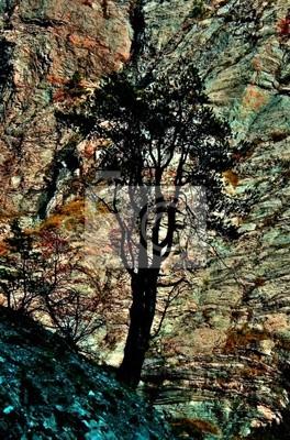 arbre et r oche