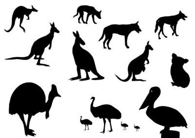 Sticker Australian animals silhouette