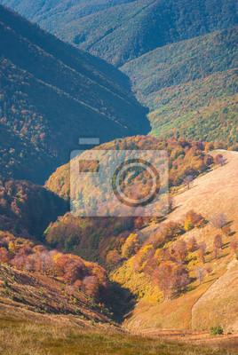 Autumn Carpathian valley