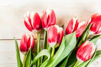 Sticker Background for congratulations, greeting cards. Fresh spring tulips flowers, on white wooden background top view copy space