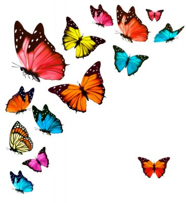 Sticker Background with colorful butterflies. Vector.