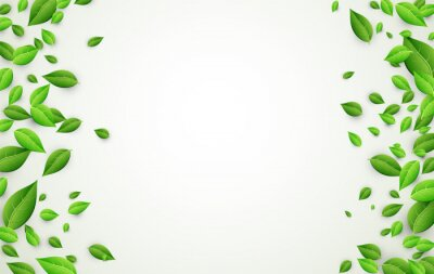 Sticker Background with green leaves.