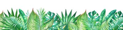 Sticker Background with watercolor tropical plants. Useful for design of banners, cards, greetings, invitations and many others.