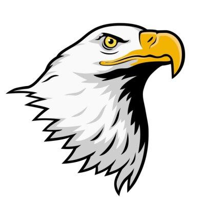 Sticker Bald eagle, American eagle, color version.