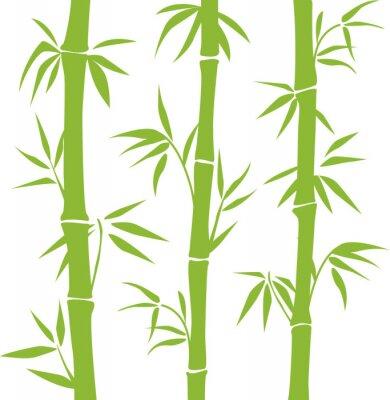 Sticker Bamboo