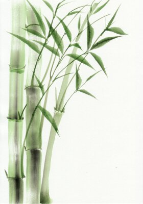 Sticker Bamboo original watercolor painting. Asian style.