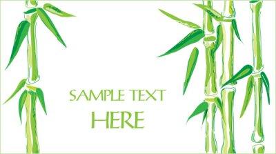 Sticker bamboo vector background