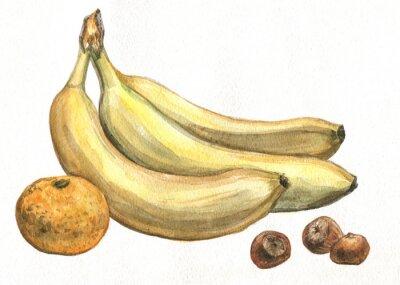 Sticker Banana, tangerine and hazelnuts. Watercolor painting