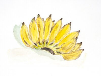 Sticker banana water color painted