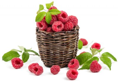 Sticker Basket of organic raspberry